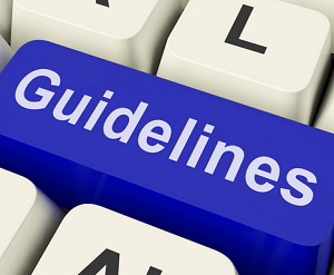 litigation guidelines