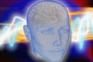 head-1058432_1280-300x200